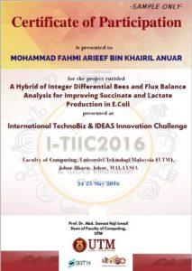 sample certificate for participant IDEAS2016